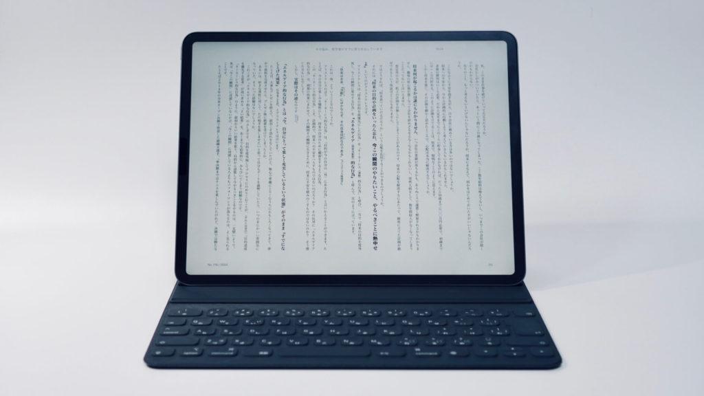 iPad全体像2