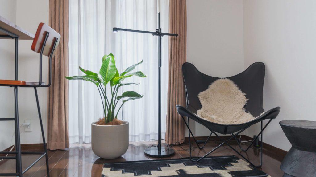 BKFチェアと植物とスタンディングデスク