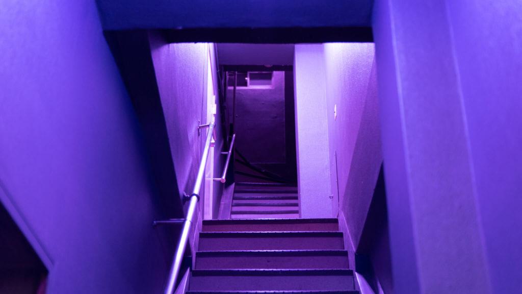 紫色の階段