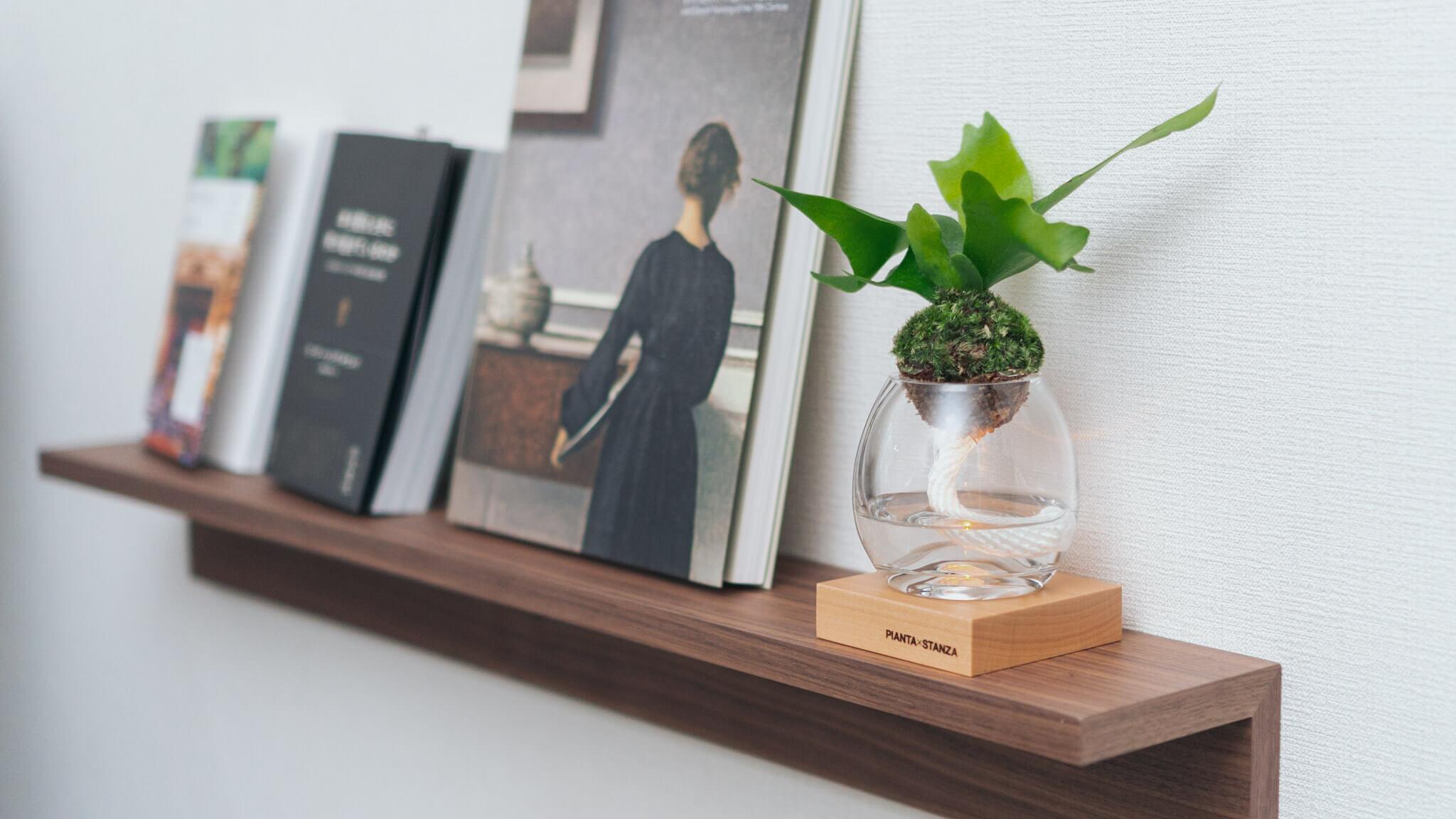 連載|植物のある暮らし