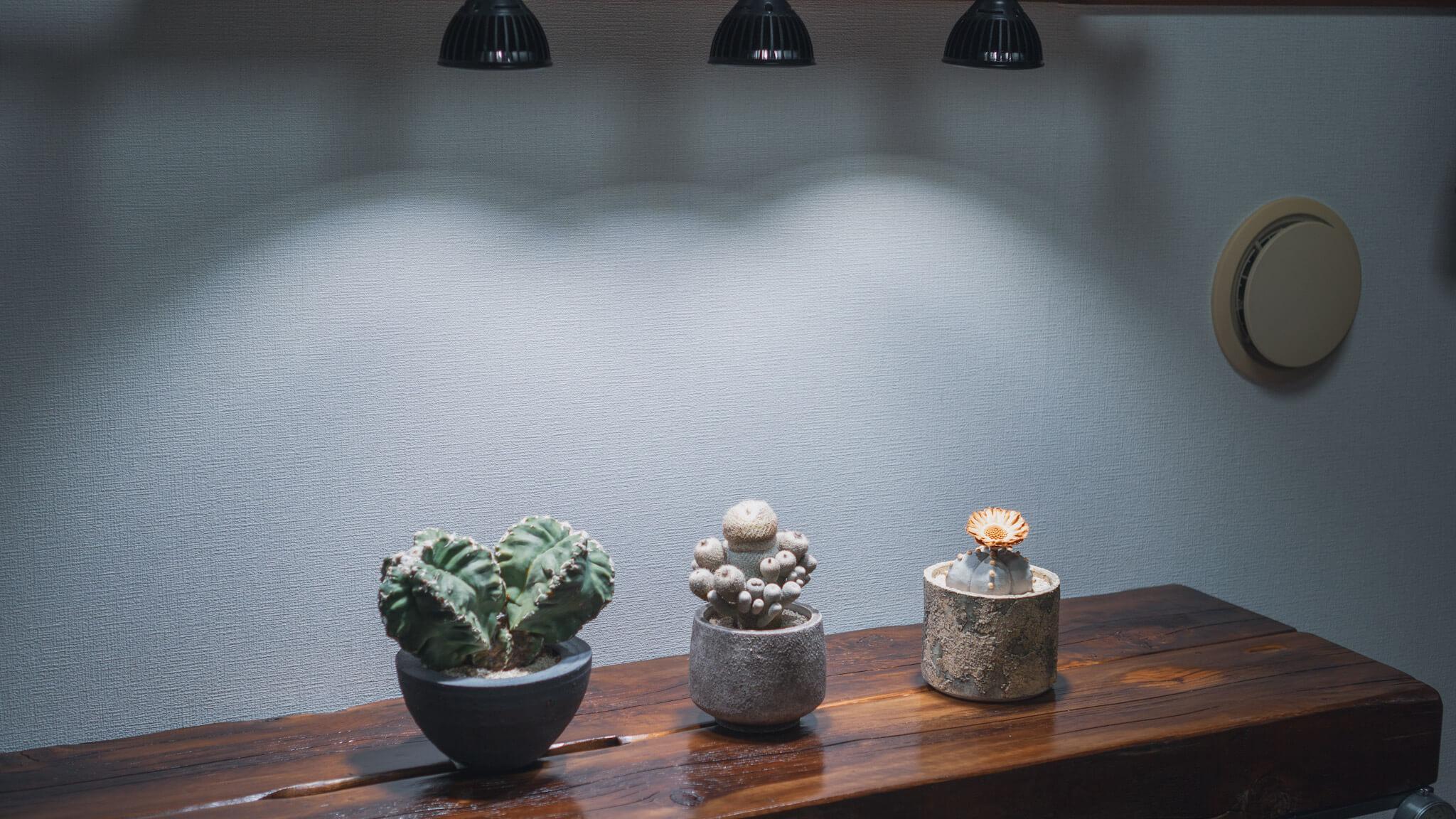 植物育成棚と奥の通気口