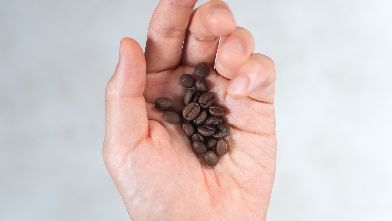 コーヒー豆を手のひらに