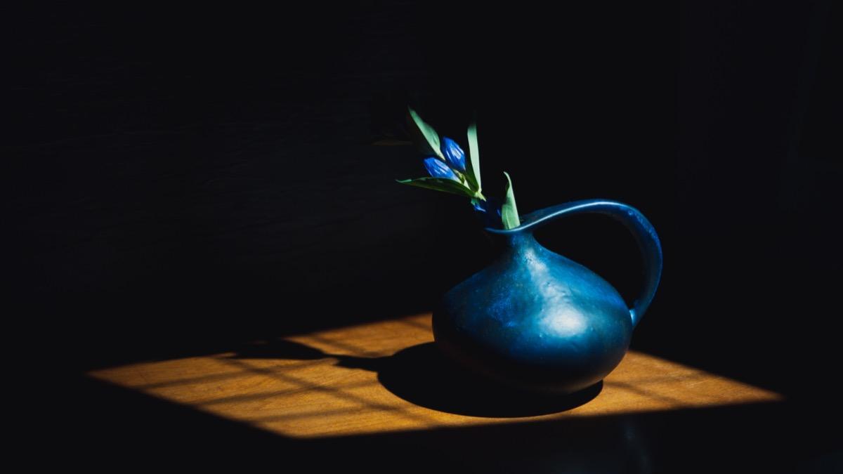 Ruscha(ルシャ)313と青い花