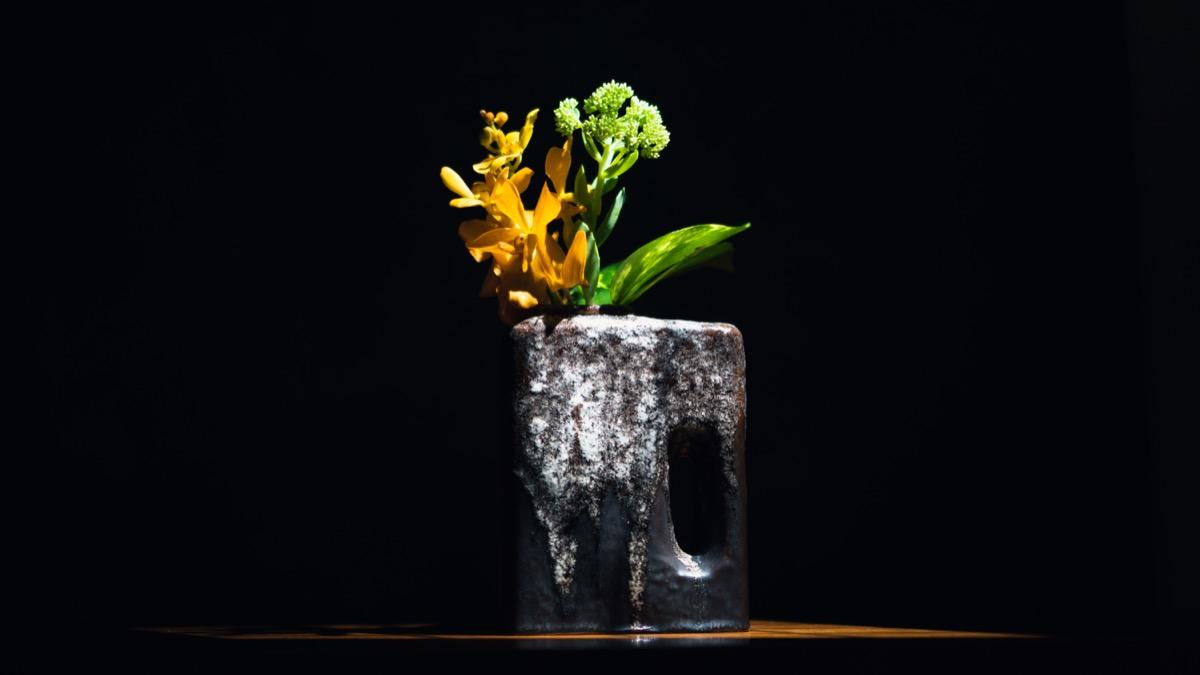 fatlavaと花